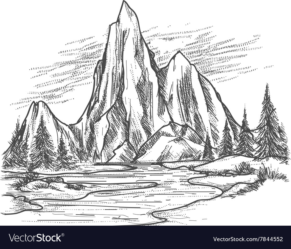 Mountain lake with pine trees vector