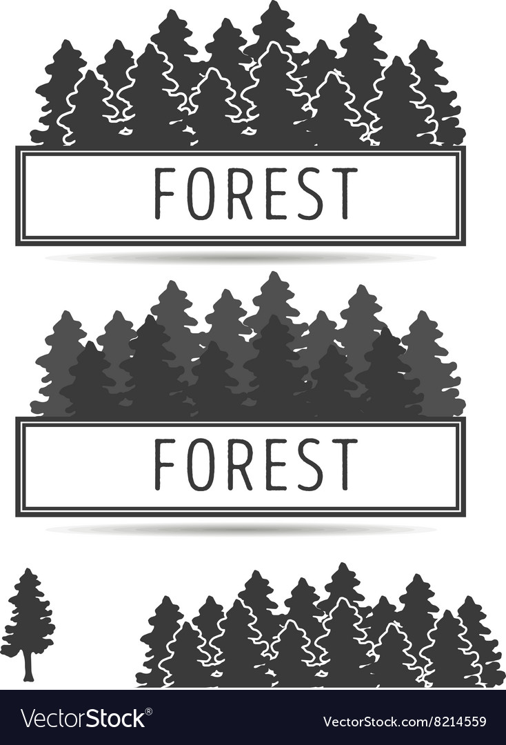 Logo or emblem of firtrees vector