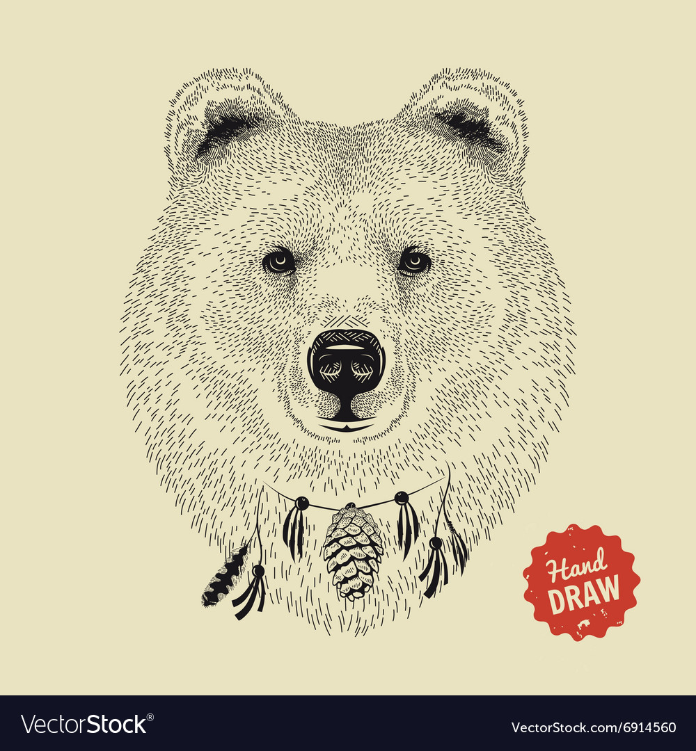 Sketch of a bear face bear head front vector