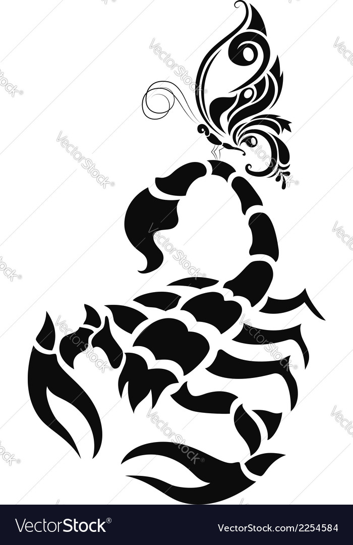 Scorpion and butterfly vector