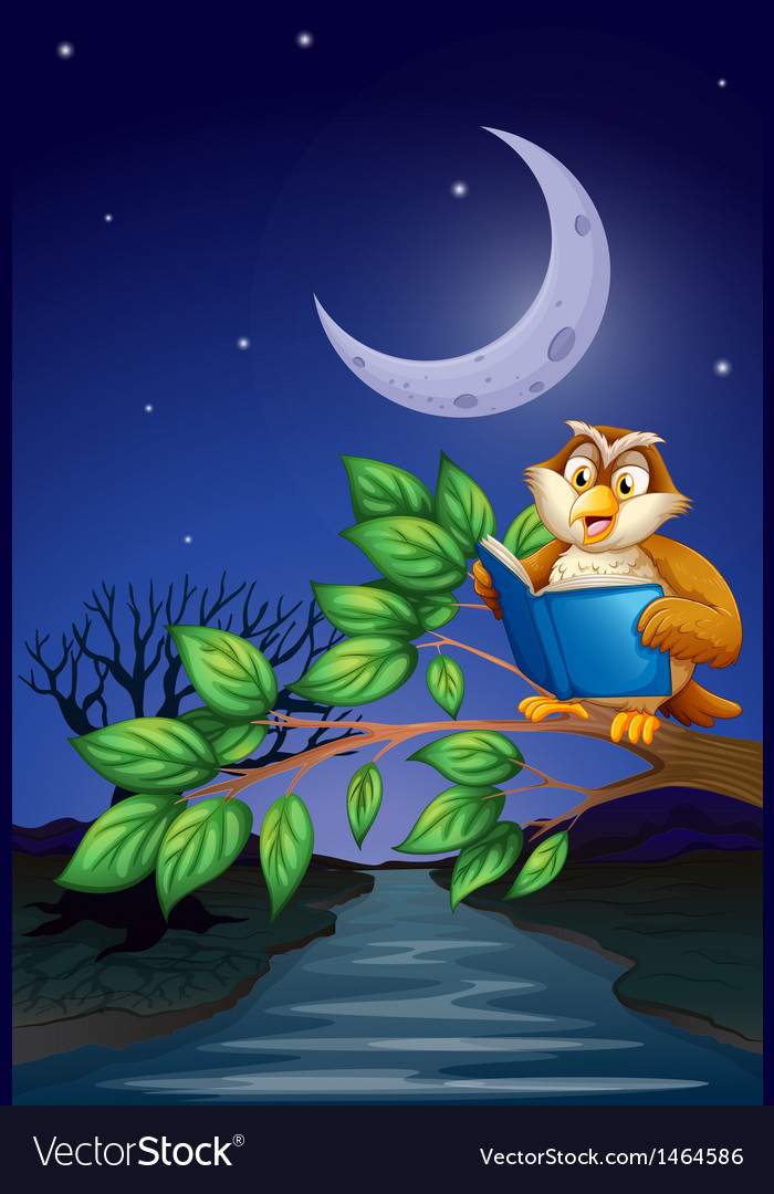 An owl reading above a branch of a tree vector