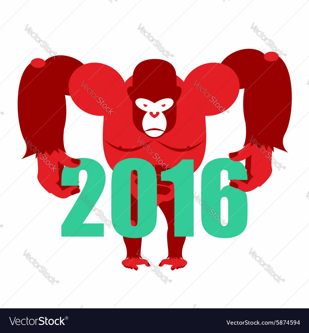 Gorilla keeps numbers 2016 symbol of new year red vector