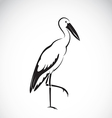 Stork vector image vector image
