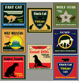 cat and dog vintage label set vector image vector image
