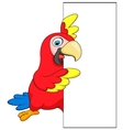 Macaw bird cartoon with blank sign vector image
