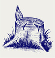 Old tree stump vector image