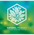 floral logo 03 vector image vector image