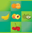 oranges bananas peaches apples cherries - vector image
