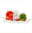preserved food vector image