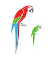 Macaw parrot and green parrot vector image