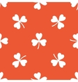 Orange clover pattern vector image
