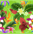 seamless pattern with cctropical plants vector image