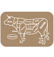 Beef Cuts Chart cow vector image