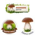 set of mushroom banner badge sticker vector image vector image