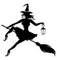 witch fase vector image vector image