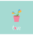 Tulip in pot Love card vector image
