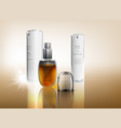 cosmetic advertising image vector image