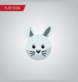 isolated rabbit flat icon bunny element vector image