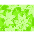 leaf grunge vector image vector image
