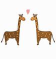 hand drawn a pair of giraffes vector image