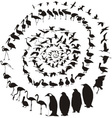 Birds Waterfowl in spiral vector image vector image