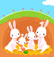 rabbits family vector image