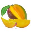 Sliced Mango vector image vector image