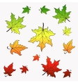 Falling maple leaves with vector image