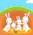 rabbits family vector image