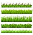 Grass green border vector image