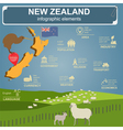 New Zealand infographics statistical data sights vector image