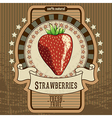 fruit label vector image