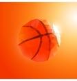 Polygon basketball vector image vector image