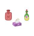 set - hot water bottle napkins medicine vector image