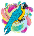 bright yellow parrot bird with blue wings vector image vector image
