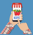 hand holding smartphone with shopping bag vector image
