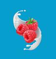 raspberry fruits and milk splash 3d icon vector image