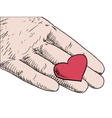human hand holding red heart vector image