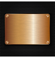 Bronze texture plate with screws vector image