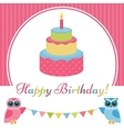 Birthday card with cake and two owls vector image