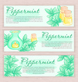 hand drawn banner with peppermint and oil burner vector image