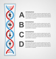 Infographics in the DNA helix form design element vector image