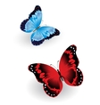 Bright blue and red butterfly vector image