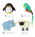 Alphabet with animals from P to S Set 2 vector image