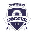 soccer club championship promotional monochrome vector image