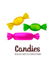 candy caramel and sugar candies vector image