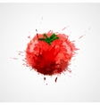 Tomato stained isolated vector image vector image