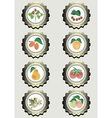 Collection of icons with fruits vector image