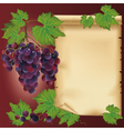 Background with black grape and old paper vector image vector image