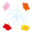 Hibiscus flowers on white background vector image